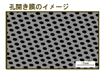 Graphene on Holey SiN Film