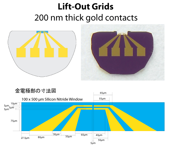 Silicon Nitride Lift-Out TEM Windows